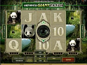 Untamed- Giant Panda Brief Review
