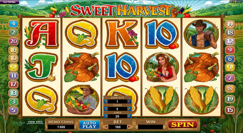Sweet Harvest Online Pokie Game Review