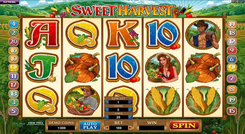 Sweet Harvest Online Pokie Game Review